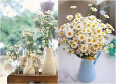 Appunti di una damigella creativa: Le stagioni dei fiori: margherite, il mio fiore di aprile