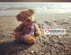 Summer time Summer Time, Teddy Bear, Animals, Animales, Daylight Savings Time, Animaux, Teddy Bears, Animal, Animais