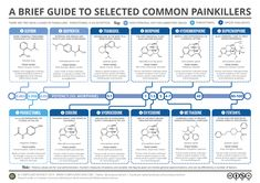 Brief-Guide-to-Common-Painkillers
