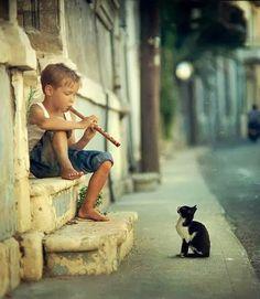 Boy flutist and cat
