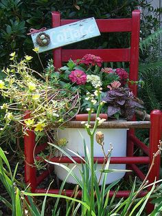 """I bought this red chair and enamel pot at Canton Trades Day.I put the two together to make my """"chair planter"""".love my movable planter! Garden Chairs, Garden Planters, Garden Gate, Colorful Flowers, Beautiful Flowers, Chair Planter, Old Chairs, Unique Gardens, Rustic Gardens"""