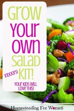 Grow your own salad kit Indoors. Thinking of having a home garden this year? Wouldn't if be fun if you grew your own salad? And wouldn't it be great if you could buy a Grow Your Own Salad Kit?! Guess what they have one you can buy!