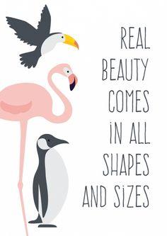 Poster Beauty A4 Poster met flamingo, toekan en pinguin en de mooie quote Real beauty comes in al shapes en sizes. A4 formaat, 250 grams papier. decoratie kinderkamer babykamer meisjeskamer meisje