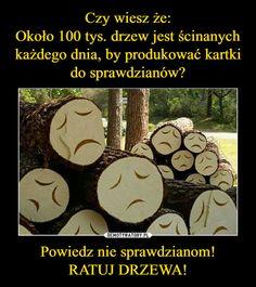 Powiedz nie sprawdzianom!RATUJ DRZEWA! – Wtf Funny, Funny Memes, Hilarious, Jokes, Polish Memes, More Than Words, True Stories, Haha, Funny Pictures