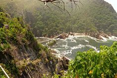 The Storms River Suspension Bridge in Tsitsikamma, Eastern Cape. The suspension bridge that hangs over the red-brown waters of the Storms River Mouth . River Mouth, Stormy Sea, Suspension Bridge, Adventure Activities, My Land, Storms, Wonderful Places, Places To Travel, South Africa