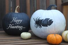 Black & white pumpkins - love the feather version - Halloween seems to be very black and white this year! Spooky Halloween, Holidays Halloween, Halloween Pumpkins, Halloween Crafts, Holiday Crafts, Holiday Fun, Happy Halloween, Halloween Decorations, Holiday Parties