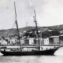 Schooner in front of Customhouse Quay Wellington City, City Library, Sailing Ships, Paris Skyline, Trains, Sailor, Boat, Ships, Earth