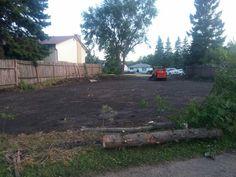 Empty, Sidewalk, Plants, Walkway, Flora, Plant, Walkways, Planting