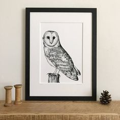 Barn Owl  Giclee Art Print from an original ink drawing.