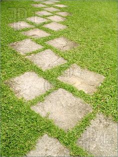 A stone pathway on a garden lawn.