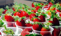 White Co School Food Cleveland, GA First #Georgia #strawberries of the season at White County Middle School #healthyeating #whitecountyga @WCMS_warrior