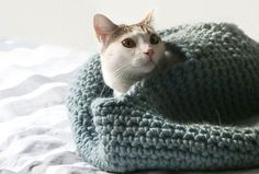 This crochet cat house pattern is so cute and cozy and sure to become your kitty's favorite place to snuggle!