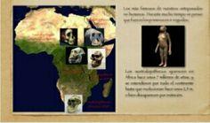 Los astralopithecus aparecen en áfrica hace unos 7 millones de años, y se extendieron por todo el continente hasta que evolucionan hace unos 2'5 millones o bien desaparecen por extincion