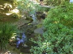 Image result for portland japanese garden Natural Garden