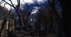 Fantasy Faire 2014 - Mourningvale Thicket_007