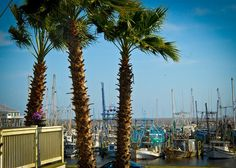 Come to Pass Christian - A Mississippi Gulf weekend with Hotel Whiskey, Sazerac Square, and other coastal charms. Pass Christian, Gulf Shores Vacation, Houston Houses, Building Front, Antique Lanterns, Falls Church, Gulf Of Mexico, Historic Homes, Mississippi