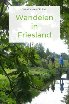 Wandelen in Friesland Hiking Trails, Backpacking, Countryside, Netherlands, Holland, Northern Lights, Places To Go, Walking, World