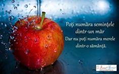 Spirituality, Apple, Fruit, Impressionism, Pictures, Apple Fruit, Spiritual, Apples