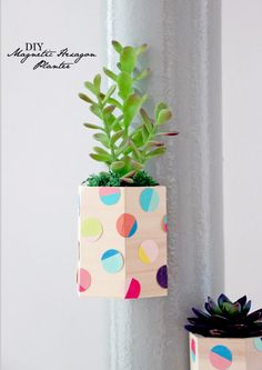DIY Teen Room Decor Ideas for Girls | DIY Magnetic Hexagon Planter | Cool Bedroom Decor, Wall Art & Signs, Crafts, Bedding, Fun Do It Yourself Projects and Room Ideas for Small Spaces http://diyprojectsforteens.com/diy-teen-bedroom-ideas-girls-rooms