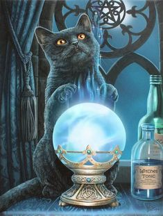 Chat Halloween, Halloween Black Cat, Magic Cat, Witch Cat, Cat Posters, Cat Wall, Fantasy Artwork, Canvas Art Prints, Cats And Kittens