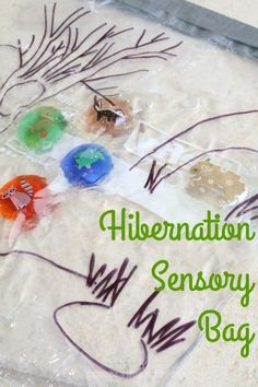Hibernation Sensory Bag Challenge-- match the hibernating animals to their winter home!| School Time Snippets