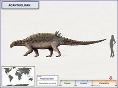 Acantholipan by cisiopurple on DeviantArt All Dinosaurs, Jurassic World Dinosaurs, Jurassic Park World, Dinosaur Life, Dinosaur Art, Reptiles, Creature Drawings, Extinct Animals, Prehistoric Creatures