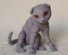 BJD Pets - british cat