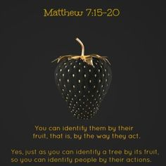 Beware of false prophets, who come to you in sheep's clothing, but inwardly they are ravenous wolves... You will know them by their fruits ♥ Matthew 7:15-20 Be careful of judging to harshly one might just be on a slow journey.