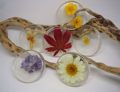 Picture of Techniques to Embed Flowers in Resin