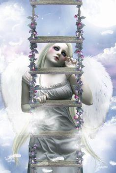 fond ecran ange gratuit  lassy028