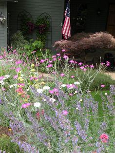 Cottage garden in Pacific NW (deer resistant)