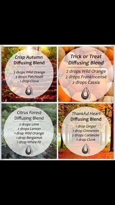 Essential Oils Combinations for Fall