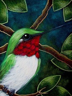 New Ideas for humming bird drawing easy watercolor tutorials Easy Watercolor, Watercolour Tutorials, Bird Drawings, Easy Drawings, Red Bird Tattoos, Hummingbird Painting, The Art Sherpa, Scratchboard Art, Animal Coloring Pages