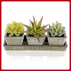 Set of 3 Life-Like Mixed Artificial Succulent Plants in Country Rustic Wooden Square Pots & Display Tray - Lets plant (*Amazon Partner-Link)