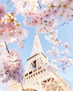 Nel 7 arrondissement svetta la Tour Eiffel che non è solo il monumento per eccellenza di Parigi e della Francia intera, ma anche una delle esperienze più belle e certamente uniche da vivere nella città. Potrai andare a Parigi mille volte, ma non te ne andrai mai senza essere passata a salutare questa imponente torre di ferro che ti sorprende ogni volta in modo diverso secondo le stagioni.