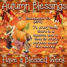 77 best fall greetings images on pinterest seasons of the year ecclesiastes 31 m4hsunfo