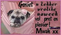 Naweek Afrikaanse Quotes, Happy Weekend, Mood Boards, Good Morning, French Bulldog, Positivity, Stickers, Box, Buen Dia