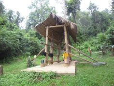 Elephant hospital Elephants, Laos, House Styles, Crafts, Home Decor, Homemade Home Decor, Manualidades, Interior Design, Home Interiors