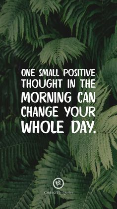 One small positive thought in the morning can change your whole day. Inspirational And Motivational iPhone HD Wallpapers Quotes Hd Wallpaper Quotes, Positive Quotes Wallpaper, Positive Wallpapers, Inspirational Quotes Wallpapers, Motivational Quotes Wallpaper, Motivational Quotes For Students, Images Wallpaper, Screen Wallpaper, Fly Quotes