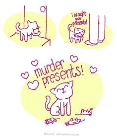 yay cats