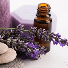 May your days be stress free and filled with wonder! Create A Calming Atmosphere With Essential Oils that can help you get through any stressful time. Valerian Essential Oil, List Of Essential Oils, Orange Essential Oil, Natural Essential Oils, Cedarwood Oil, Cedarwood Essential Oil, Natural Herbs, Natural Oils, Lavender Oil