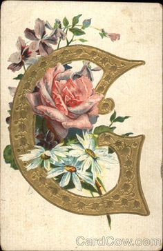 Flowering vines, Black letter and Vines
