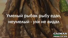 Умелый рыбак рыбу едал, неумелый — ухи не видал  Поговорки о рыбалке от Caiman Fishing Cup 2016. http://www.caiman.ru/fishing/  Следите on-line за нашим уловом!  #рыбалкавастрахани #caimanfishingcup #рыбалка #астрахань #мумра #база177