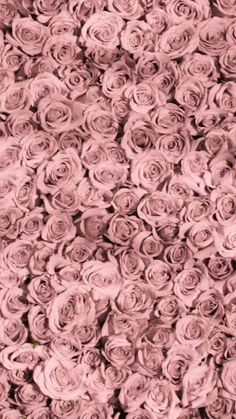 Image about rose in flowers🌷 by pink wallpaper design, flower wallpaper, designer Wallpaper Iphone Pastell, Pink Wallpaper Design, Flower Phone Wallpaper, Trendy Wallpaper, Flower Wallpaper, Cute Wallpapers, Pastel Flowers, Pink Roses, Flower Backgrounds
