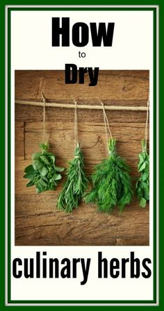 3 Things to Consider When Drying Culinary Herbs....