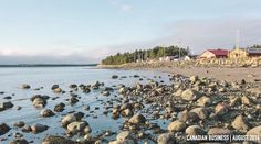 Why did this BC fishing village dump 120 tonnes of iron dust into the Pacific?http://bit.ly/1k8sZiH