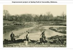 Work on the lake at Sping Park early 1900s Tuscumbia Alabama