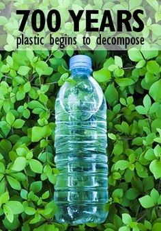 It takes plastic water bottles 700 years to decompose. Switch today to a filtered water bottle and convert your tap water into pure water. Save The Planet, Our Planet, Plastic Pollution, Ocean Pollution, Think, Environmental Issues, Earth Day, Global Warming, Mother Earth