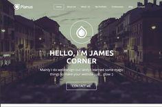 PlanusWP - One Page Wordpress Theme by Picseel on @creativemarket