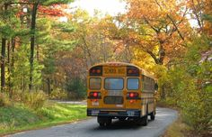 school bus in the fall - Back to School! Old School Bus, School Bus Driver, Pre School, School Days, Back To School, School Buses, Mercer University, Retro Bus, Road Pictures